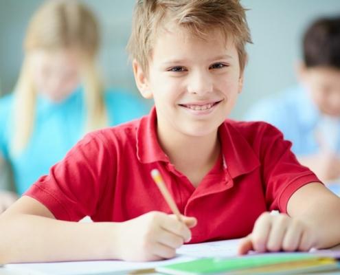 Remedial Schools